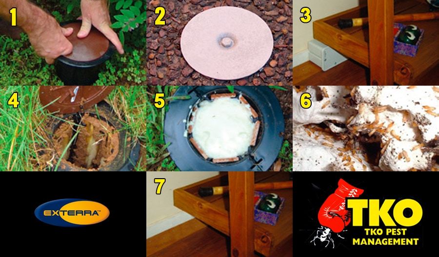 A seven-step photo gallery showing the simple process associated with the installation and ongoing management of Exterra Termite Systems