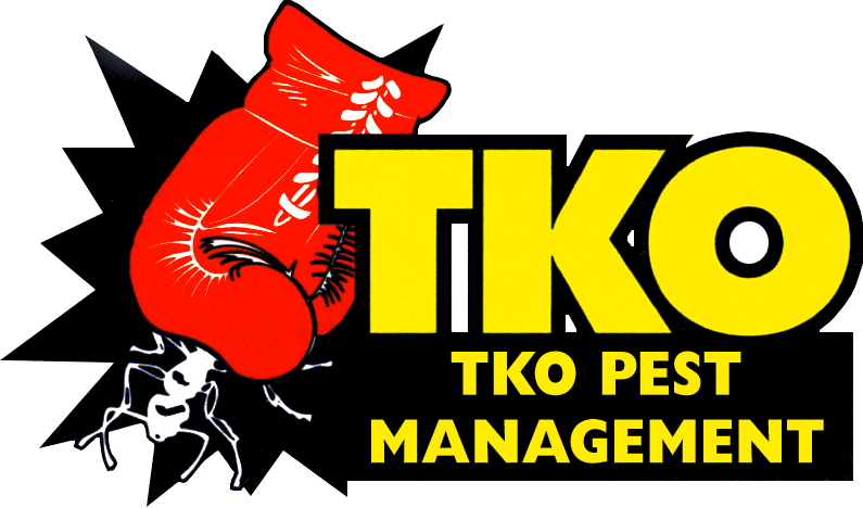 Visit TKO Pest Management on Facebook, Google+ & YouTube
