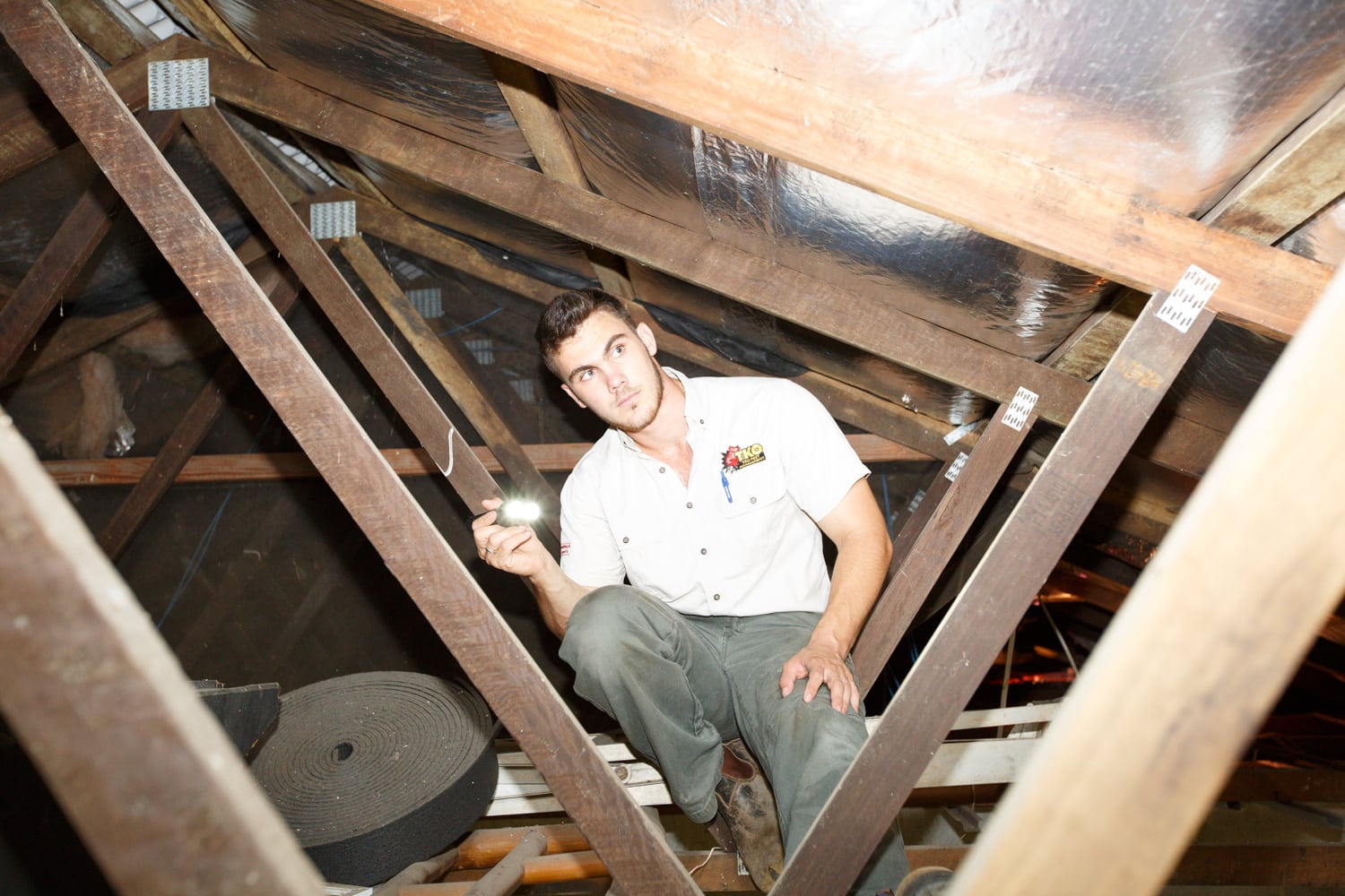 Tom from TKO Pest Management, up inside the roof cavity of a Cairns home completing a Building and Pest Inspection